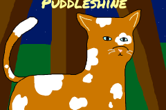 Puddleshine